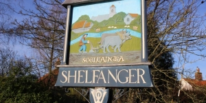 tree-surgery-shelfanger